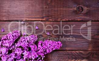 Flowering lilac branch on a brown wooden surface