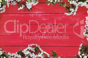 Red wooden background with cherry blossoms