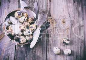 Quail eggs in a basket with feathers