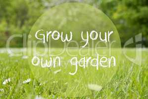 Gras Meadow, Daisy Flowers, Quote Grow Your Own Garden