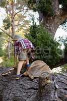 Boy climbing on the fallen tree trunk in forest