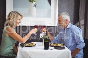 Mature couple toasting their glasses of red wine