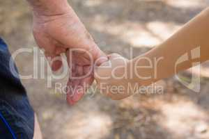 Grandfather holding his granddaughter hand in the forest