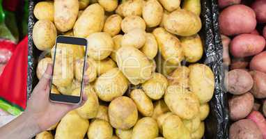 Hand taking picture of potatoes with mobile phone in store