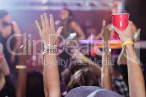 Fans enjoying music concert