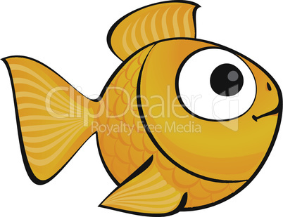 golden fish isolated