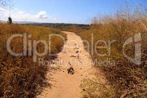 Horse manure along an Upper Newport Bay Nature Preserve hiking t