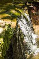 cascade falls in forest