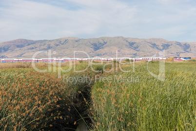 Alviso Wetlands and Diablo Mountain Range.