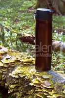 thermos, forest, hike, journey, relaxation, drink, hot, mug