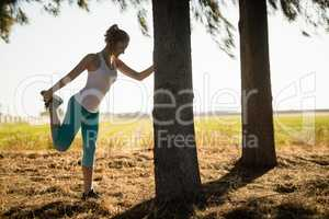 Young woman exercising by tree at farm