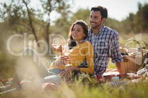 Smiling young couple holding wineglasses while relaxing on picnic blanket