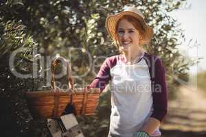 Smiling young woman with wicker basket standing at olive farm
