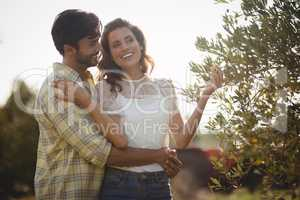 Young couple standing by tree at farm on sunny day