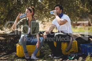 Couple drinking water while sitting on crates