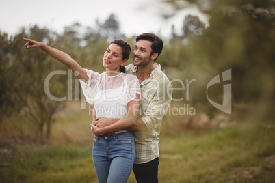 Girlfriend showing something to boyfriend at olive farm
