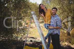 Portrait of smiling couple with ladder at olive farm