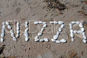 "Writing with shells: ""Nizza"" (German designation for Nice, Franc"