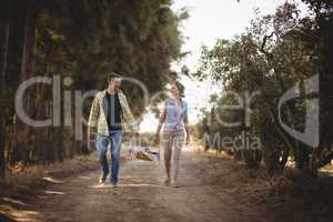 Cheerful couple carrying basket while walking on dirt road at olive farm