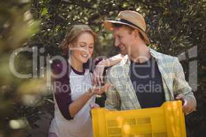 Happy young couple with yellow crate standing at farm
