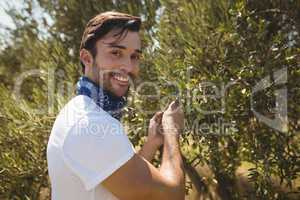 Close up portrait of man holding olive tree at farm