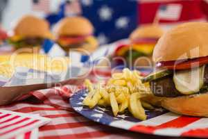 Hamburger and french fries on plate