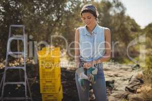 Young woman wearing gloves while standing on field at olive farm
