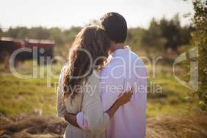Rear view young couple embracing at olive farm