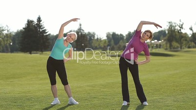 Fit women stretching hands and warming up in park