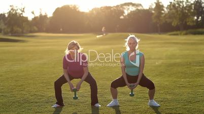 Sexy adult women doing squatting with dumbbells