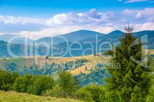 Carpathian Mountains and Pastures