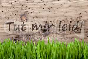 Bright Wooden Background, Gras, Tut Mir Leid Means Sorry