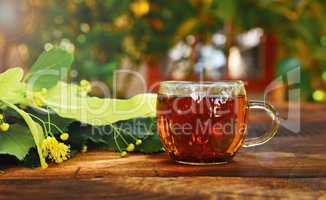 Transparent mug with tea and a lime tree branch