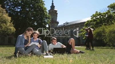 Positive college students studying on campus lawn