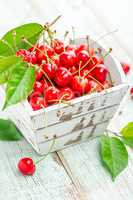 Sweet cherry on white background closeup