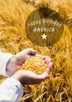 White fourth of July graphic in circle against cornfield and hands filled with corn