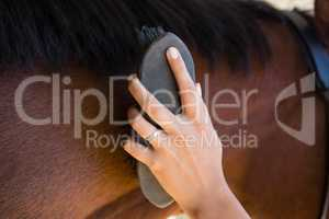 Cropped hand of woman brushing horse mane