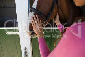 Cropped hands of woman touching horse