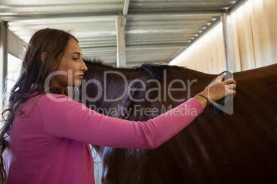 Woman brushing horse