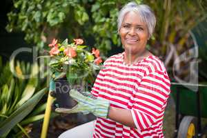 Portrait of smiling woman holding potted plant