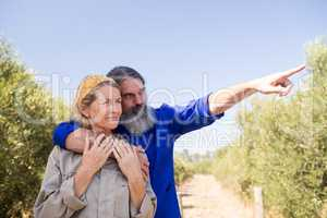 Couple pointing at distance in olive farm