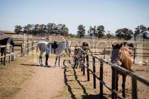 Kids standing with a white horse in the ranch