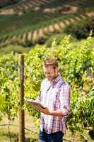 Smiling man using phone and tablet at vineyard
