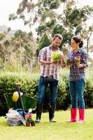 Full length of couple holding potted plants at lawn