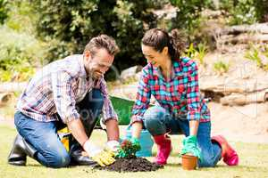 Smiling couple planting at lawn