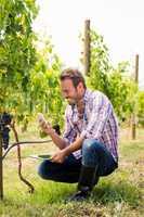 Smiling man using phone while holding tablet at vineyard