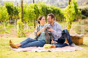 Couple toasting wineglasses at lawn