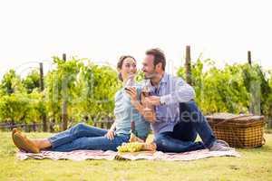 Smiling couple enjoying red wine at lawn