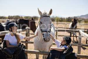 Two smiling girls caressing the horse