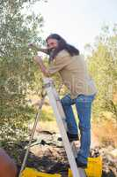 Happy man pruning olive tree in farm